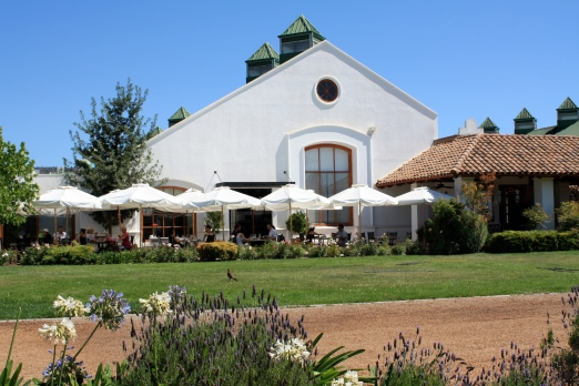 Best winery experience in Chile
