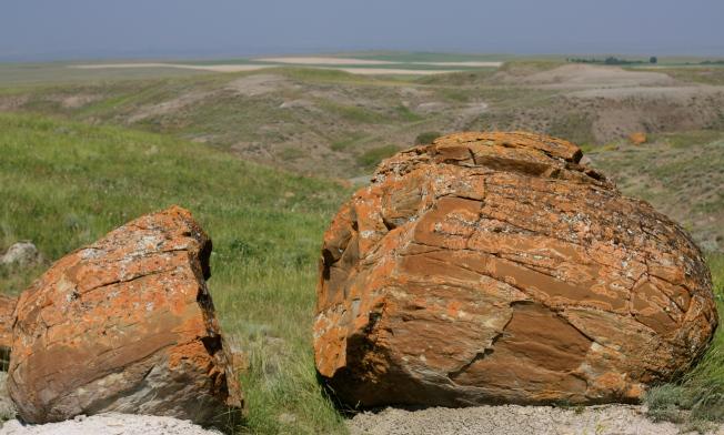 Alberta rocks